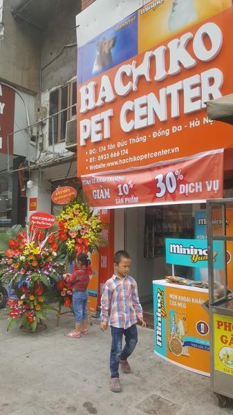 Hachiko pet shop