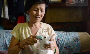 Tùng Lộc Pet – Người phụ nữ chuyên giải cứu và nuôi dưỡng chó mèo lang thang ở Sài Gòn