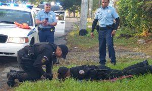 Tùng Lộc Pet – Cảnh sát Puerto Rican giải cứu chú chó khỏi cống thoát nước