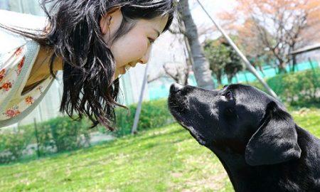 Tùng Lộc Pet – Lý giải tình cảm giữa con người và vật nuôi