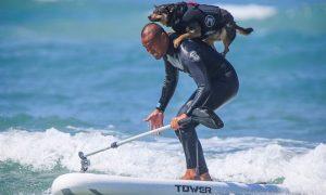 Tùng Lộc Pet – Chó trổ tài lướt sóng trong cuộc thi Surf Dog Surf-A-Thon