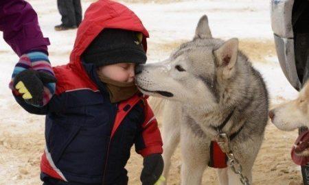 Tùng Lộc Pet – 21 lý do nên biết ơn với chú cún yêu của bạn