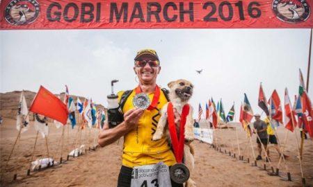 Tùng Lộc Pet – Xúc động với chú chó chạy 160km để được nhận nuôi
