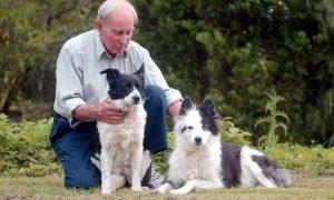 Tùng Lộc Pet – Những thú cưng có cuộc sống sang chảnh nhất thế giới