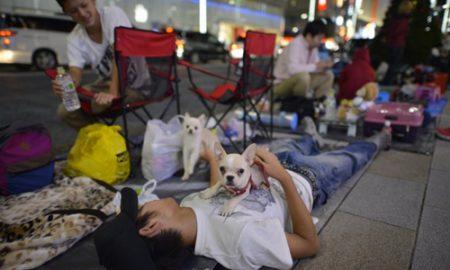Mang chó xếp hàng chờ mua iPhone 5S 5C