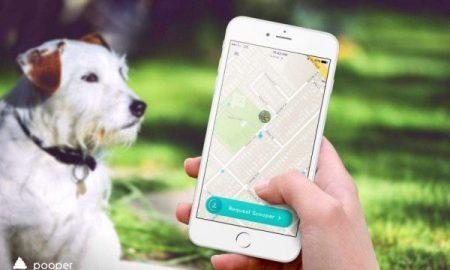 Tùng Lộc Pet – Ứng dụng nhặt phân chó đã xuất hiện tại Mỹ