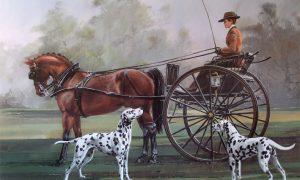 Lịch sử chó Đốm
