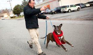 Tùng Lộc Pet – Hơn 35,000$ Ủng hộ cho người đàn ông đi bộ 5 dặm một ngày để gặp cún yêu của mình