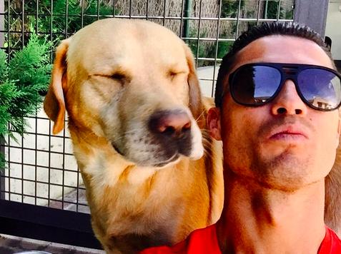 Tùng Lộc Pet – Ronaldo cứu sống 80 chú chó bằng 1 chữ ký
