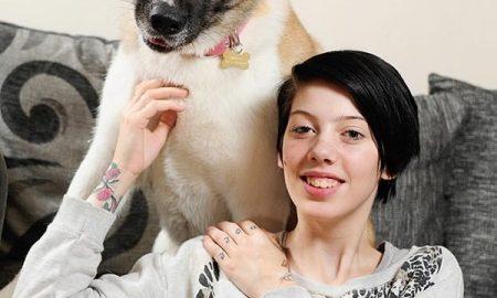 """Chó cứu sống chủ nhờ cú đạp """"karate"""" siêu mạnh"""