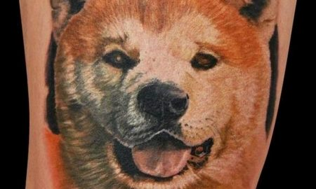 Tùng Lộc Pet – Hình xăm chó dành cho những tín đồ Akita Inu.